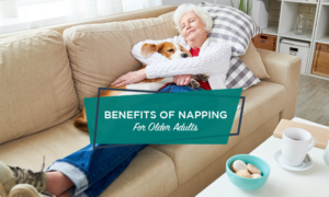 Elderly woman napping